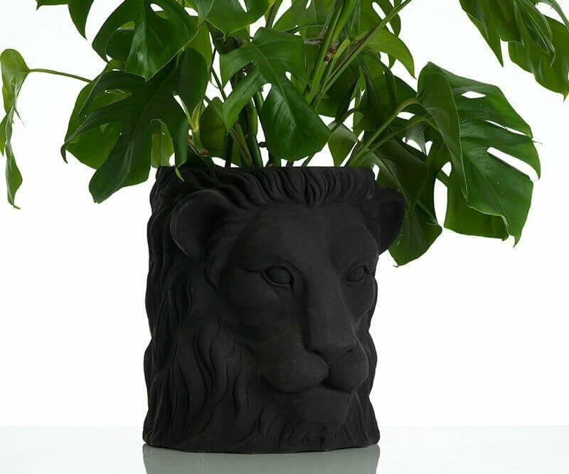 Garden-Glory-Lion-Pot-BIG---Black-spadeluxe-2