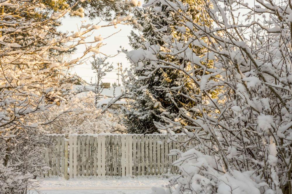 Garten im Winter winterfest - Spadeluxe