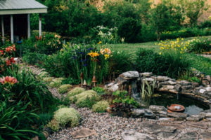 Outdoor-Living Trends 2021 - Gartenteich